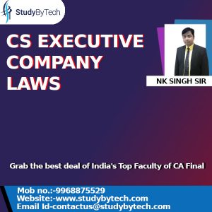CS EXECUTIVE COMPANY LAWS